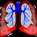 Asthma,breathing.allergies,infections,flu,cold,medications, medication like Qvar,flovent,pulmicort,liquid medication, nebulizer